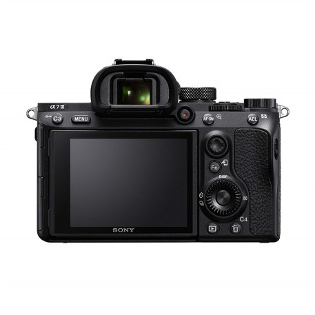 Sony A7 Pic2 (800 x 800)