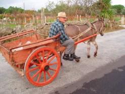 O Bráulio com a última carroça de Vila Verde, já em pleno século XXI