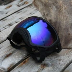 Rex Specs Black : Blue Revo