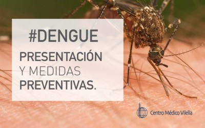 Dengue: el virus ya circula en 11 provincias