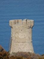 La tour génoise de Capanella