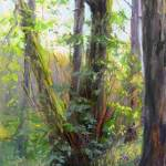 Image of pastel painting by Gretha Lindwood - Forest Wildflowers