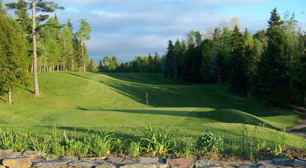 Hillsborough Golf Club greens.