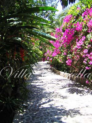 Punta El Custodio
