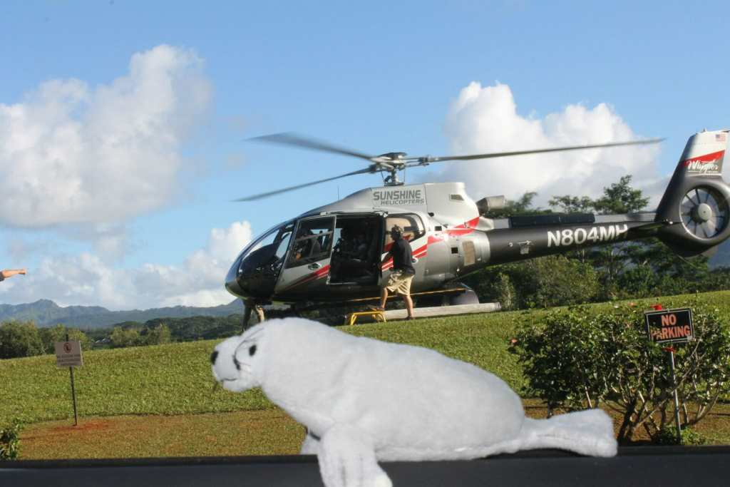 kauai-helicopter-ride