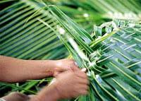 coconut-weaving