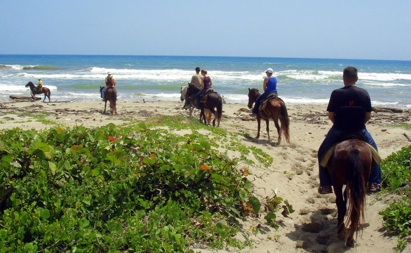 cabarete-horseback-riding