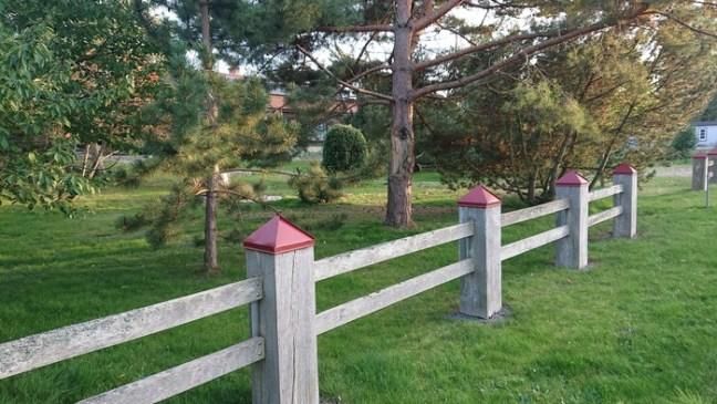 Röda hattar på staket