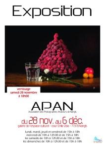 Exposition de l'APAN 2015