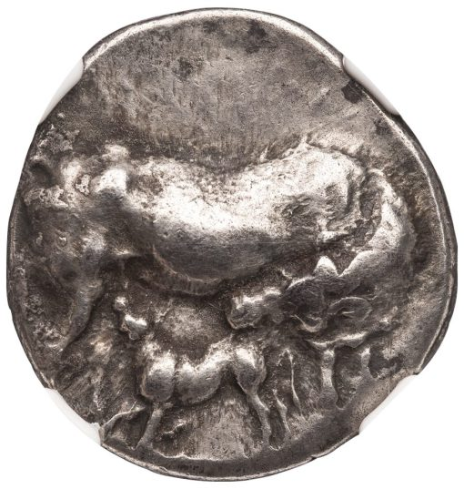 CARYSTUS SILVER STATER - WONDERFUL COIN WITH COW AND COCK - XF NGC GRADED GREEK EUBOEA COIN (Inv. 10603)