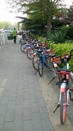 biciclette (1)