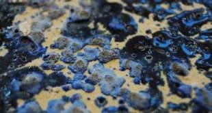 """Mingailės Mikelėnaitės keramikos paroda """"Plastiškos uolienos"""""""