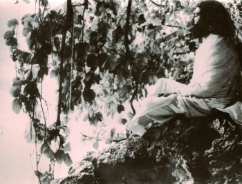 Gurudev Swami Nischalanandaji in a lonely moment