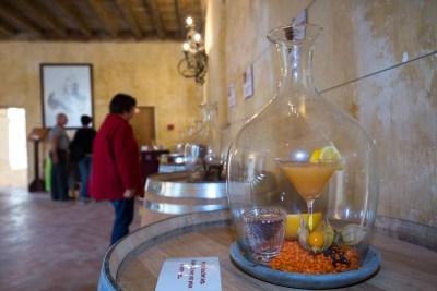 Le nez du vin ou ses arômes