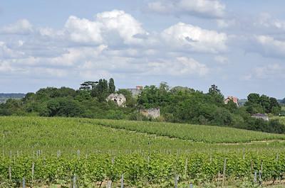 Vignes du Val de Loire, berceau des Pet Nat