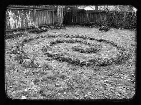 The Wisdom of the Spiral