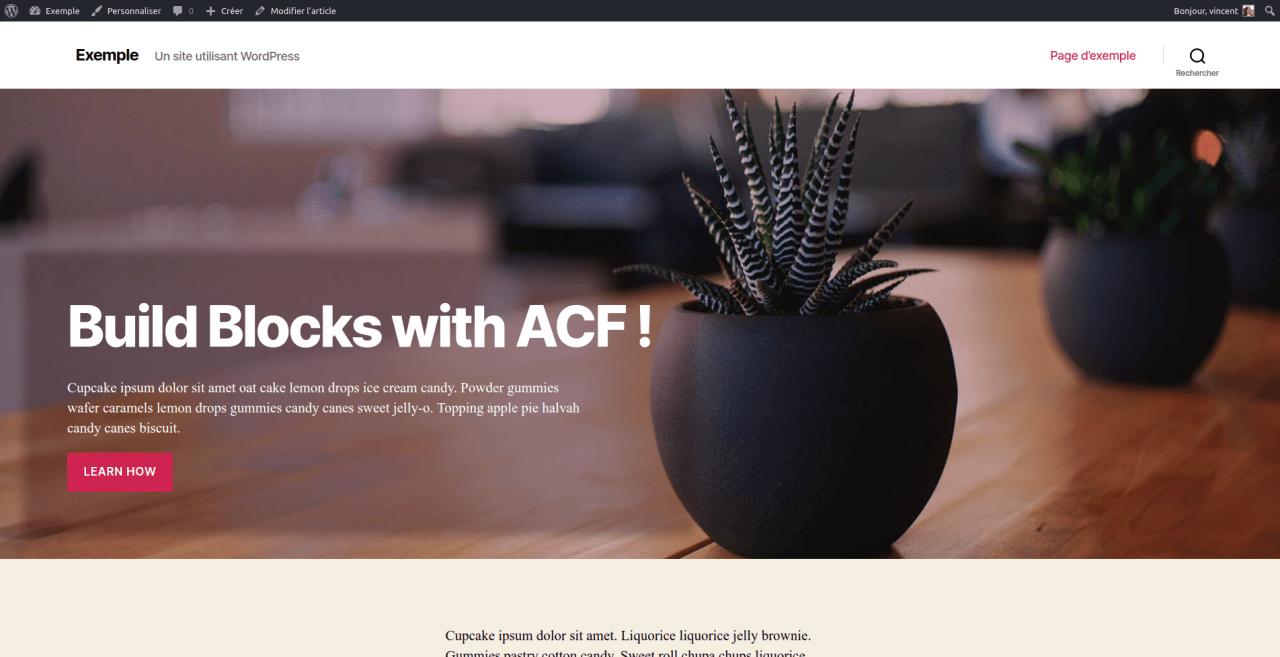 Bloc d'entête créé avec ACF Pro