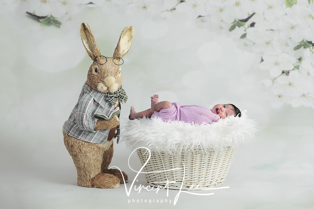 amazing deals newborn with sister photoshoot portrait studio