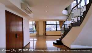 River Place Penthouse call 6598531741