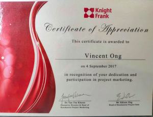 2017 Project Marketing Vincent Ong 6598531741