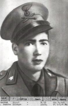 Guerrisi Domenico Rocco