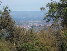 Vista di Polistena dalla Bombardiera