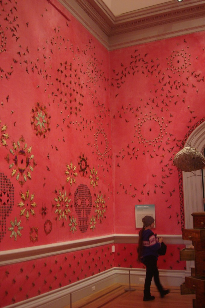 Jennifer Angus, Wonder, the Renwick, Smithsonian, DC 2015-01