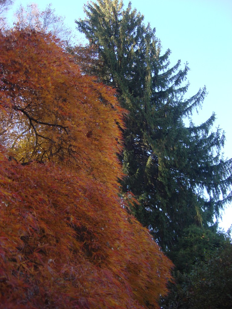 Winterthur Autumn 2011 2