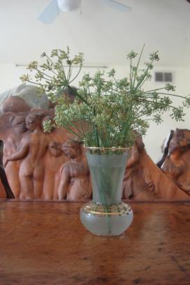 fennel-seeds-clarks-park-market-09122015-1