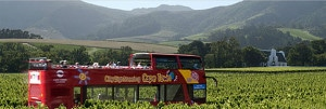 Red hop on hop off buses make visiting the Constantia Wine Route easy for all