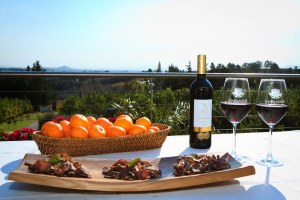 The authentic South African pairing of red wine and biltong at Marianne's wine estate