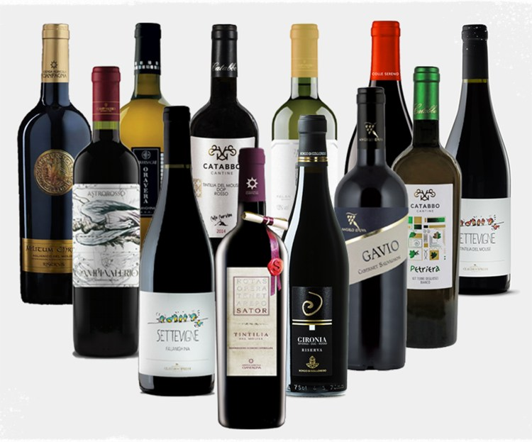 Ultimate Vine & Soul Wine Case