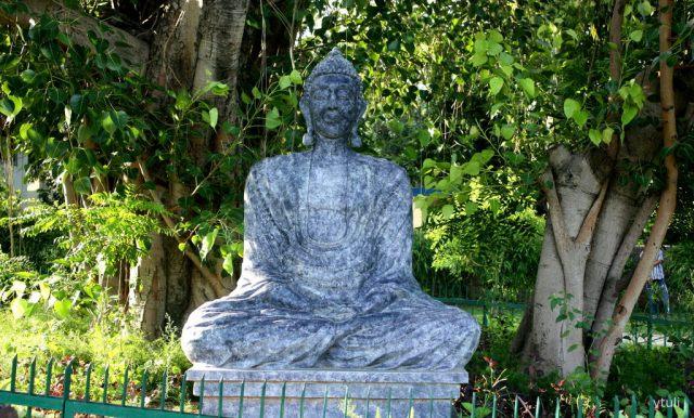 The Meditation Buddha - Japanese Garden Chandigarh