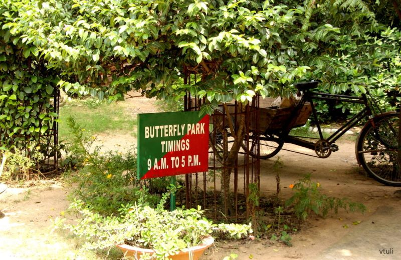 Park Timings - Butterfly Park Chandigarh