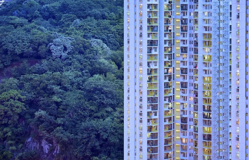 Contemplating-the-blue-moment-in-Hong-Kong-vinegret (3)