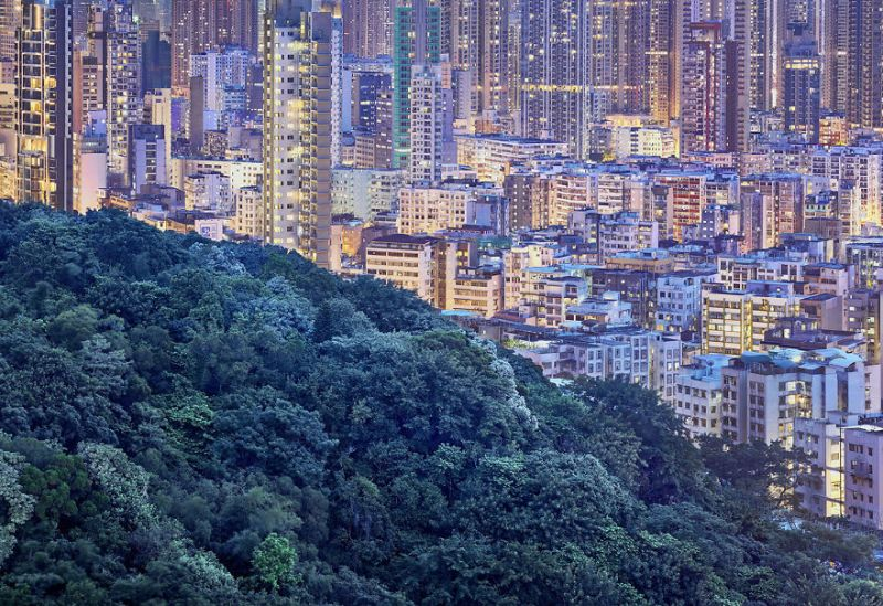 Contemplating-the-blue-moment-in-Hong-Kong-vinegret (4)