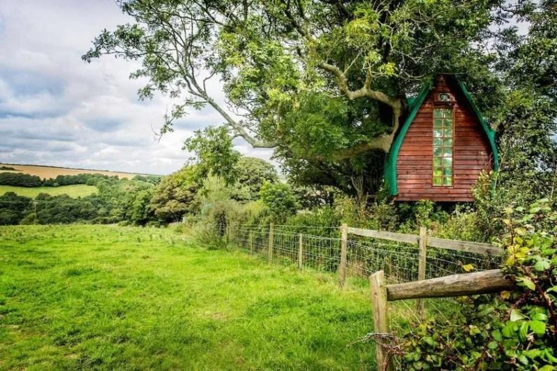 etot domik na dereve neveroyatno populyaren sredi polzovatelej airbnb_vinegret (8)