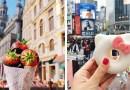 Девушка ведет Инстаграм, в котором размещает разные вкусности со всего мира.