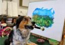 Видео: Пес рисует потрясающие пейзажи.