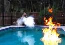 Видео: Может ли жидкий азот потушить горящую воду?