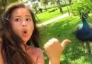Видео: Павлин напал на девушку, когда та кривлялась для селфи.