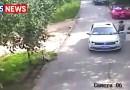 Видео: Тигры напали на женщин в китайском сафари-парке.