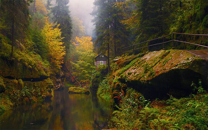 cozy-cabins-in-the-woods-vinegret (21)