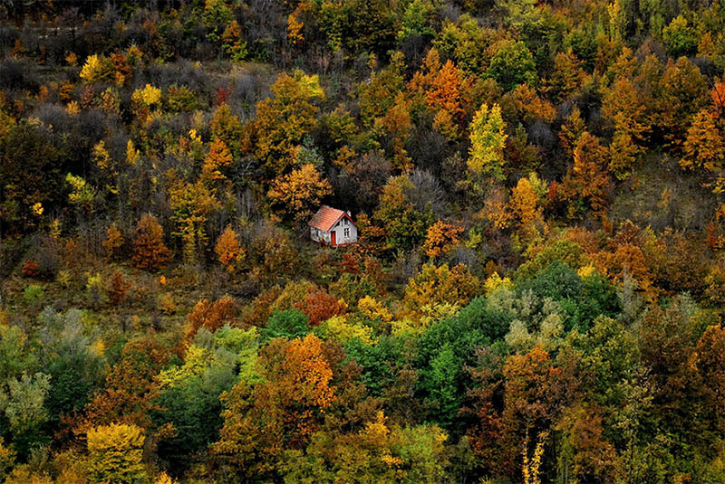 cozy-cabins-in-the-woods-vinegret (24)