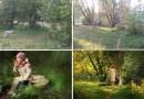 Фотографии обычных людей VS. снимков профессиональных фотографов.