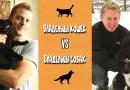 Видео: Кому живется лучше — Любителям Кошек или Любителям Собак?