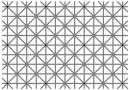А сможете ли вы увидеть все 12 черных точек сразу?