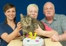 Этот старый кот отпраздновал свой 141 год рождения.