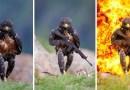 Интернет-пользователи устроили очередной фотошоп-батл, в котором «издеваются» над ястребом, изображая его в разных образах.