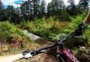 Видео: Завораживающая поездка от первого лица на горном велосипеде по бездорожью.
